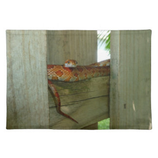 red rat snake in fence head up placemat