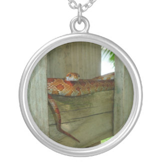 red rat snake in fence head up round pendant necklace