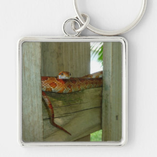 red rat snake in fence head up Silver-Colored square keychain