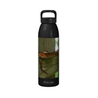 red rat snake in fence head up reusable water bottle