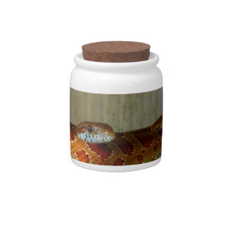 red rat snake side head candy jar