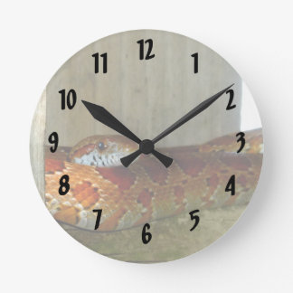 red rat snake side head clock