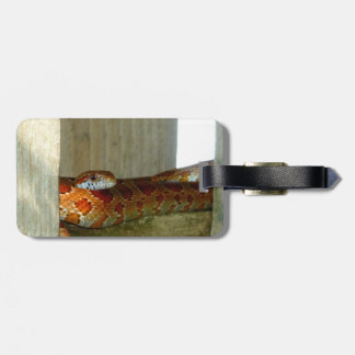 red rat snake side head luggage tags