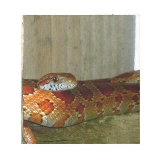red rat snake side head notepads