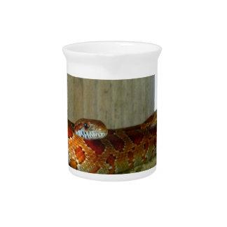 red rat snake side head beverage pitcher