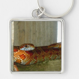 red rat snake side head Silver-Colored square keychain