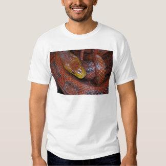 Red Rat Snake T Shirt