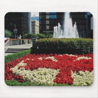 Red Red and white maple leaf display Vancouver C Mousepads