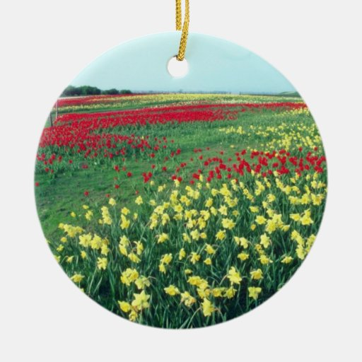 Red Red and white tulips, Kew Gardens flowers Double-Sided Ceramic Round Christmas Ornament