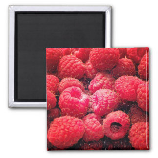 Red Red Red 2 Inch Square Magnet