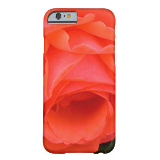 Red Red Rose iPhone 6 Case