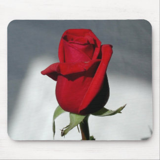 Red red rose mouse pads