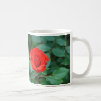 Red, Red Rose Mug