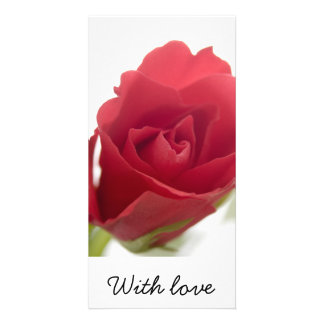Red, red rose ... photo card