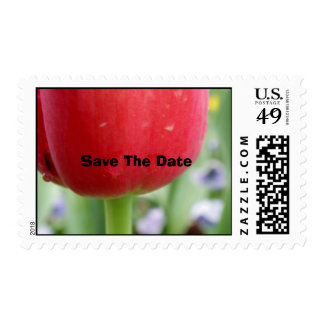 Red Red Tulip Postage Stamps