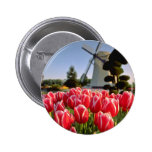 Red Red tulips and windmill flowers Button