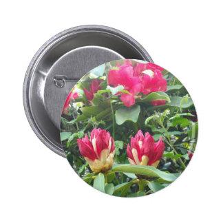 Red Rhodendron Buds 2 Inch Round Button
