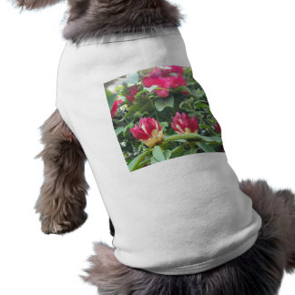 Red Rhodendron Buds T-Shirt