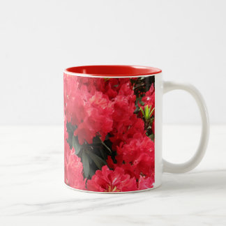 Red Rhododendron Mug