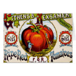 Red Ripe tomatoes For Sale - Vintage Ad Card