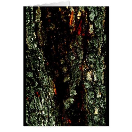 """Red River Bark"" JTG Art Greeting Card"