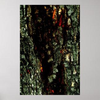 """""""Red River Bark"""" JTG Art Poster"""