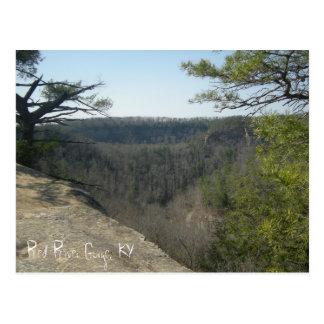 Red River Gorge, KY  postcard