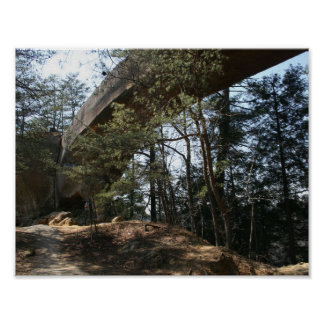 Red River Gorge, KY - Skybridge poster