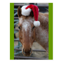 Red roan Appaloosa in Redv Santa Hat Postcard