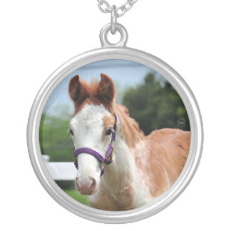 Red Roan Colt Round Pendant Necklace