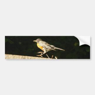 Red Robin Bobbin Bumper Sticker