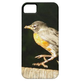 Red Robin Bobbin iPhone SE/5/5s Case