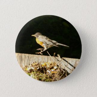 Red Robin Bobbin Pinback Button