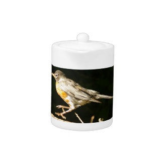 Red Robin Bobbin Teapot