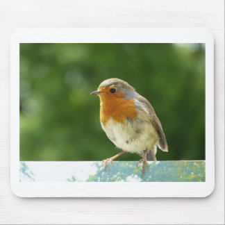 Red Robin Mouse Pad