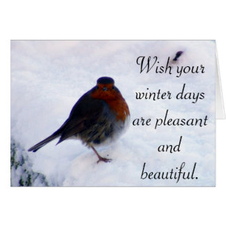 Red Robin winter wishes greeting card