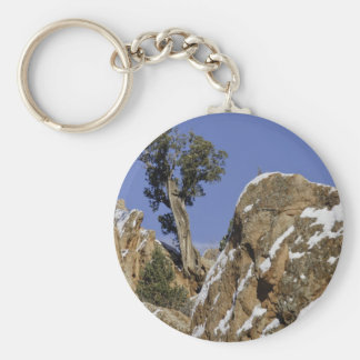 Red Rock Canyon 7 Basic Round Button Keychain