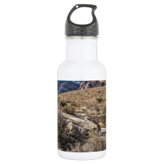 Red Rock Canyon & Dry Riverbed 18oz Water Bottle
