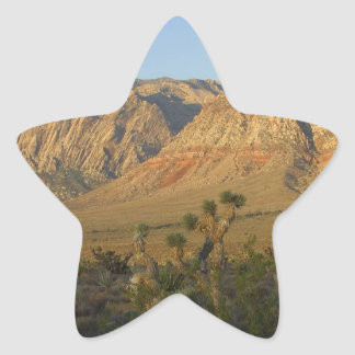 Red Rock Canyon National Conservation Area 2 Star Sticker