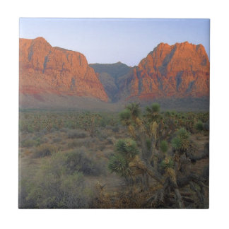 Red Rock Canyon National Conservation Area Ceramic Tile