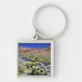 Red Rock Canyon National Conservation Area, Las Keychain