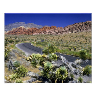 Red Rock Canyon National Conservation Area, Las Print