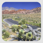 Red Rock Canyon National Conservation Area, Las Stickers