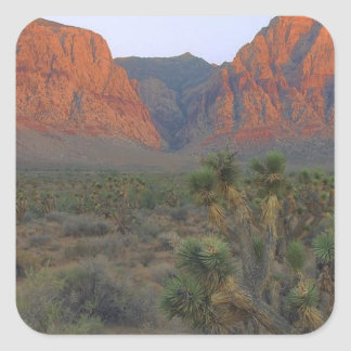 Red Rock Canyon National Conservation Area Square Sticker