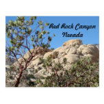 Red Rock Canyon  Postcard