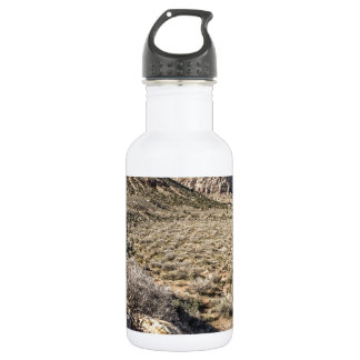 Red Rock Canyon View Stainless Steel Water Bottle