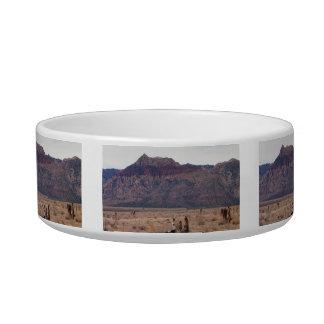 Red Rock Desert Bowl