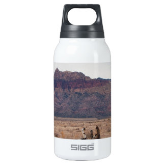 Red Rock Desert 10 Oz Insulated SIGG Thermos Water Bottle