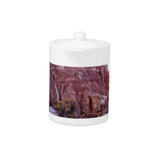Red Rock Formation Teapot