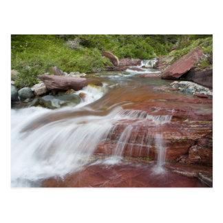 Red rock in Baring Creek in Glacier National Postcard